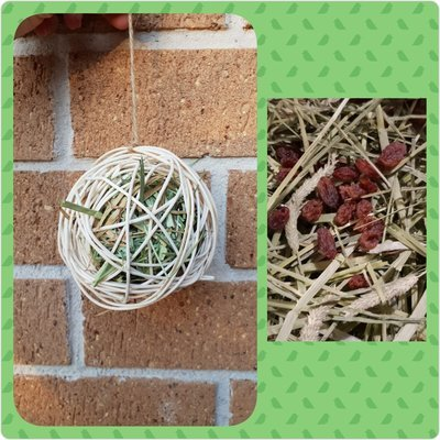 Ratten willow Treat ball with Timothy hay & Sultanas