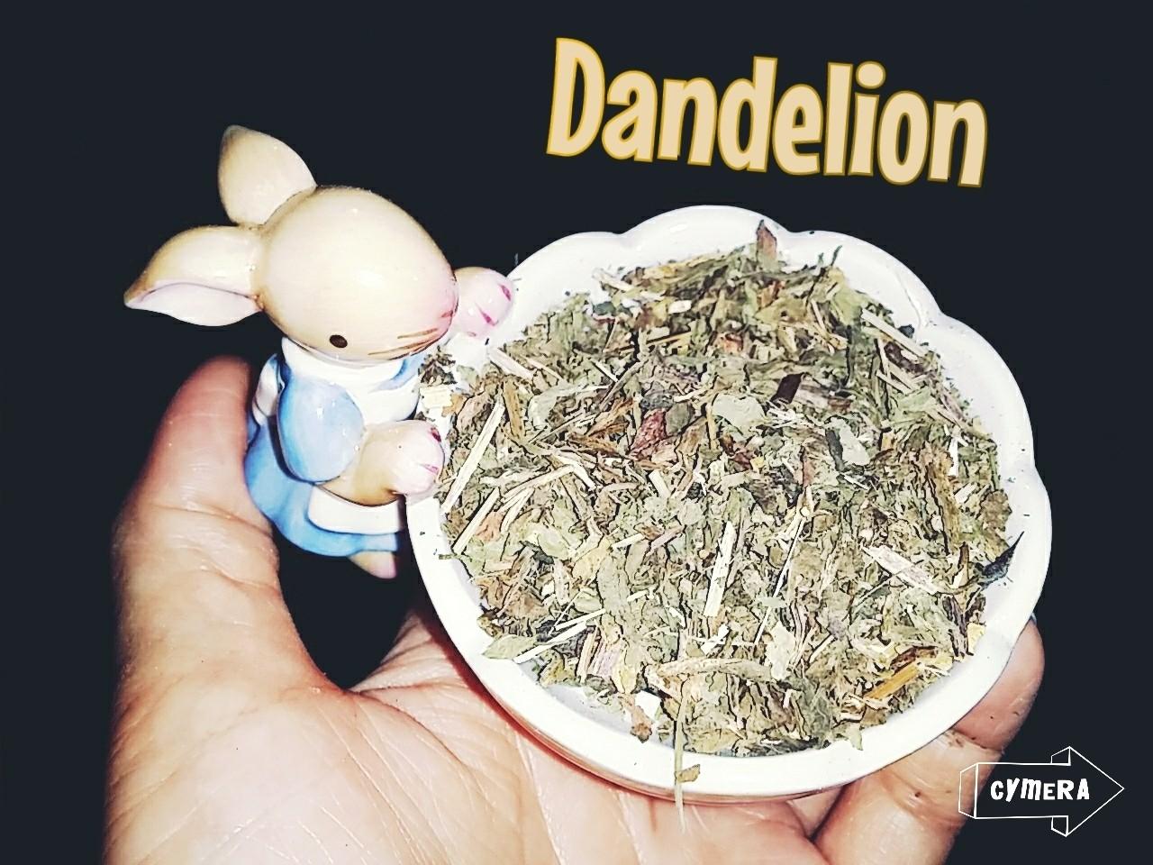 Dried Dandelion