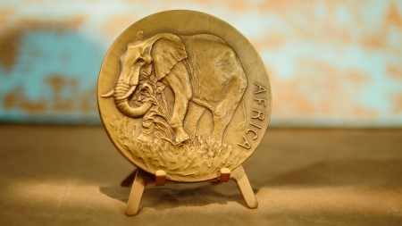 "Society of Medalists 27th Issue Bronze Medal ""Africa/Watering Hole"" AV160015"