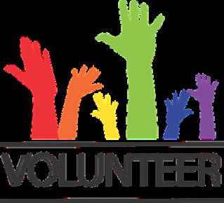 Volunteer - Brianiacs #4