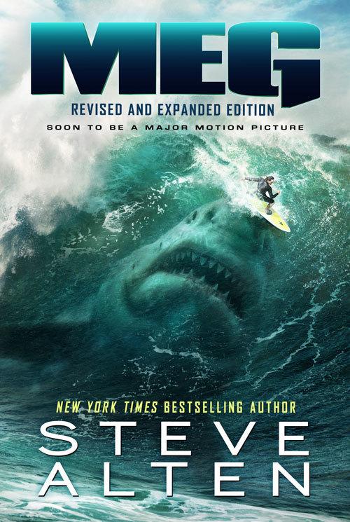 MEG Surfer Poster 0007