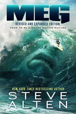 MEG Surfer Poster