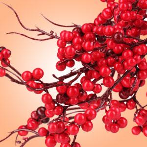Twigs & Berries