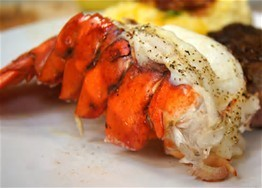 Lobster on the half shell