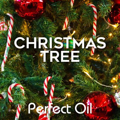 Christmas Tree Home Fragrance Oil 4 Oz