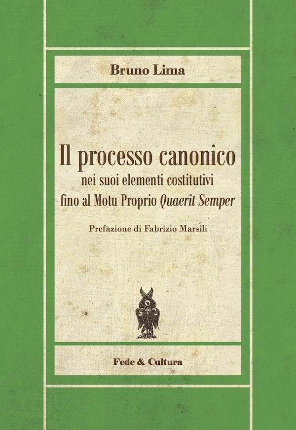 Il processo canonico nei suoi elementi costitutivi