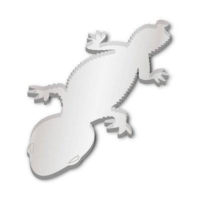 Knob-tailed Gecko (Pair)