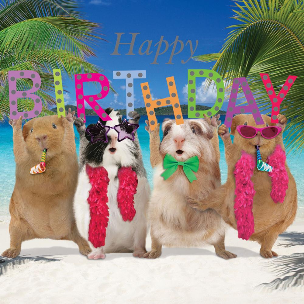 Crazy Crew Happy Birthday Card