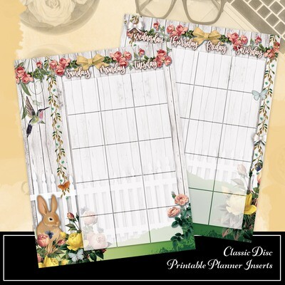 CLASSIC DISC - Spring Fest Spread Printable Planner Insert