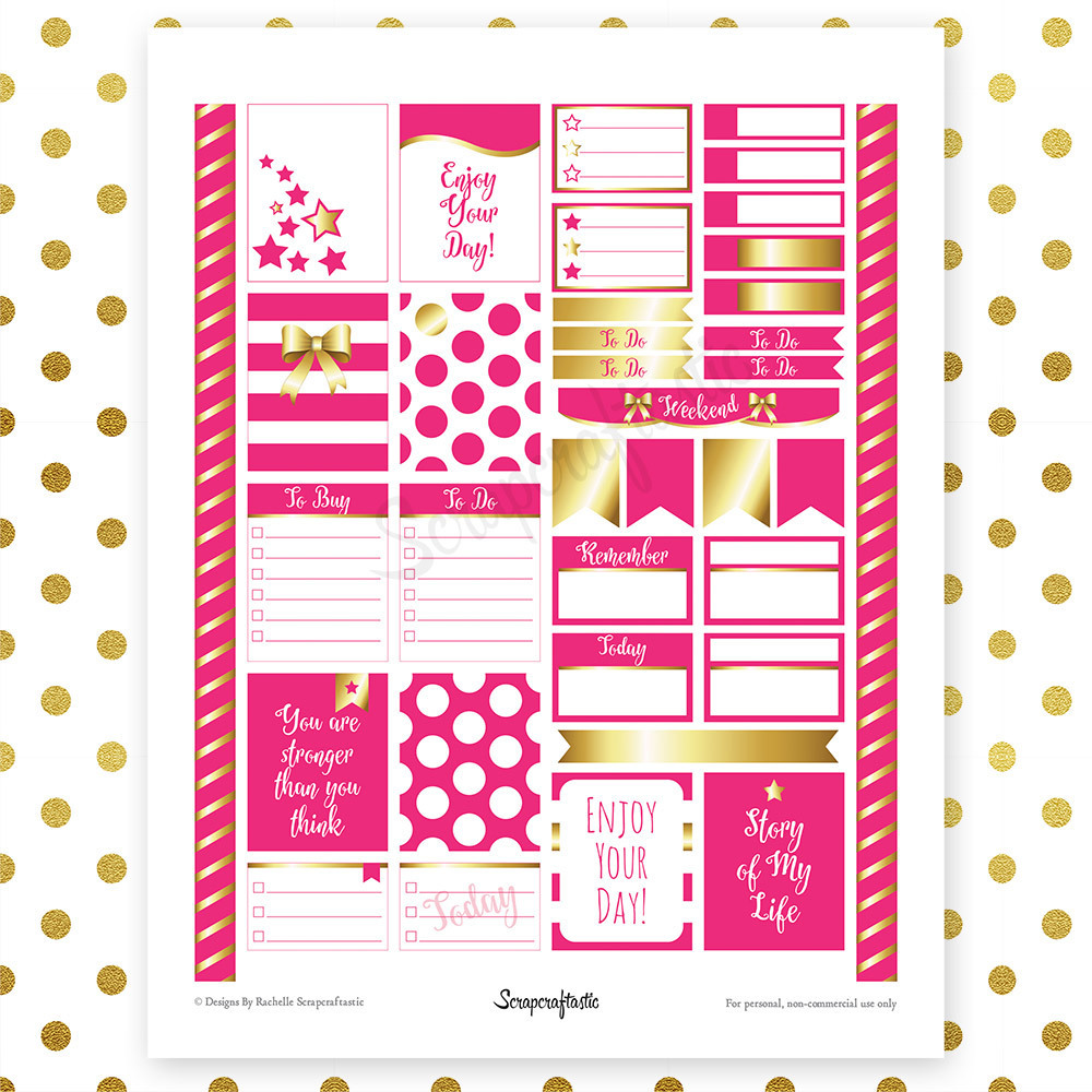 All Hot Pink Silver Pro Printable Planner Stickers for Erin Condren Life Planner 00105