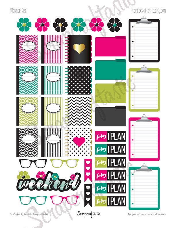 Planner Pro Printable Planner Stickers