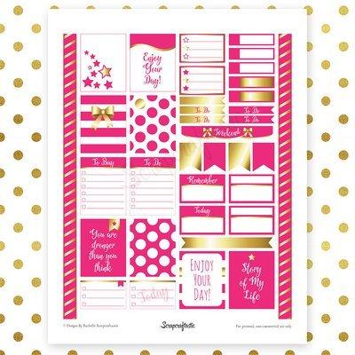 All Hot Pink Pro Printable Planner Stickers for Erin Condren (EC) Life Planner