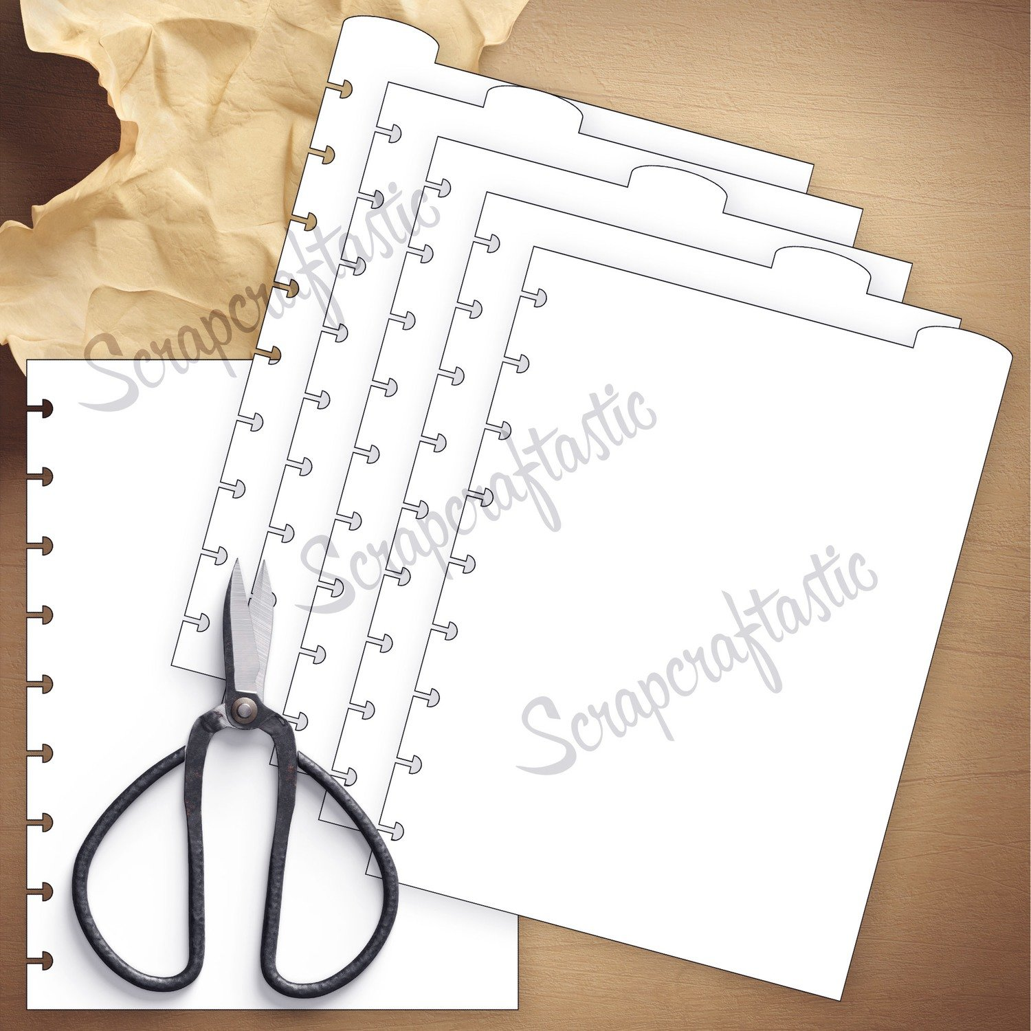 CLASSIC DISC - 5 Rounded Top Tab Divider Printable Templates and Cut Files