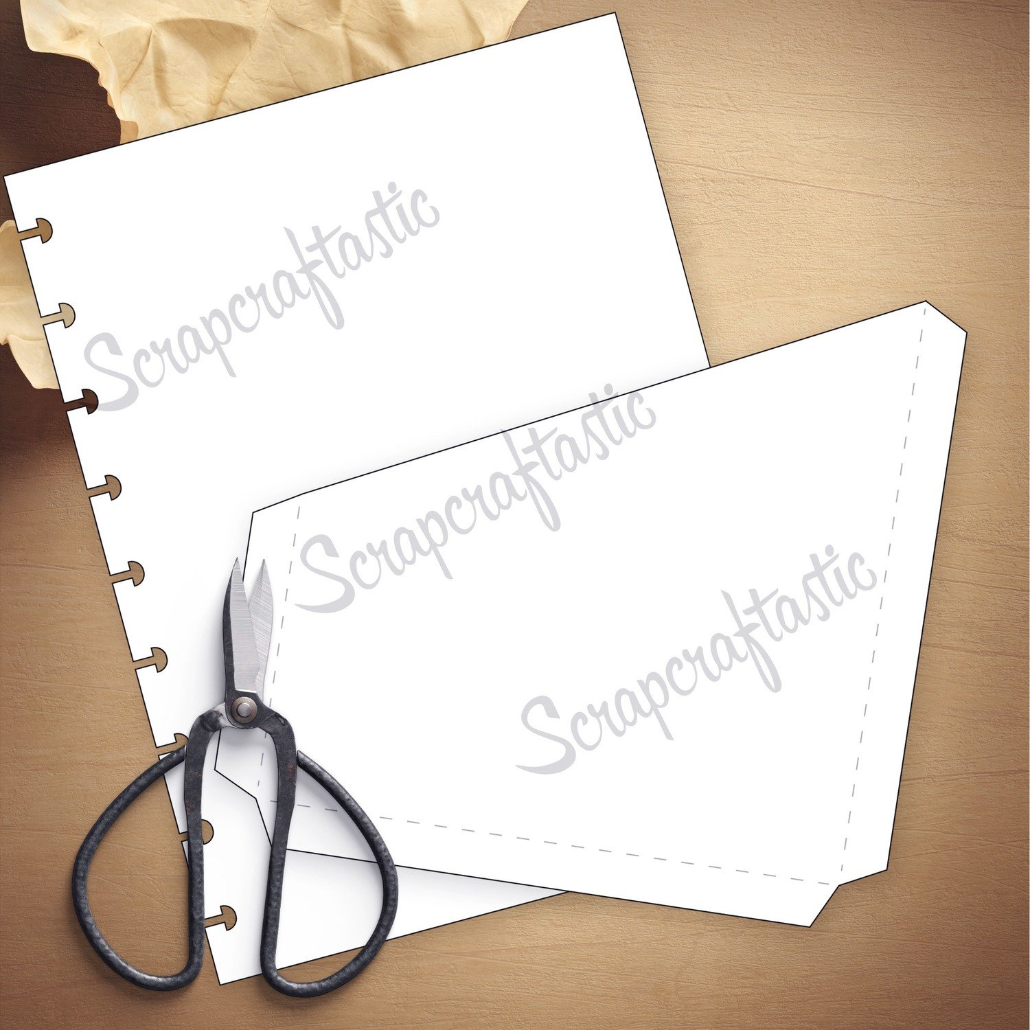 LETTER SIZE DISCS Folder Insert Template and Cut Files