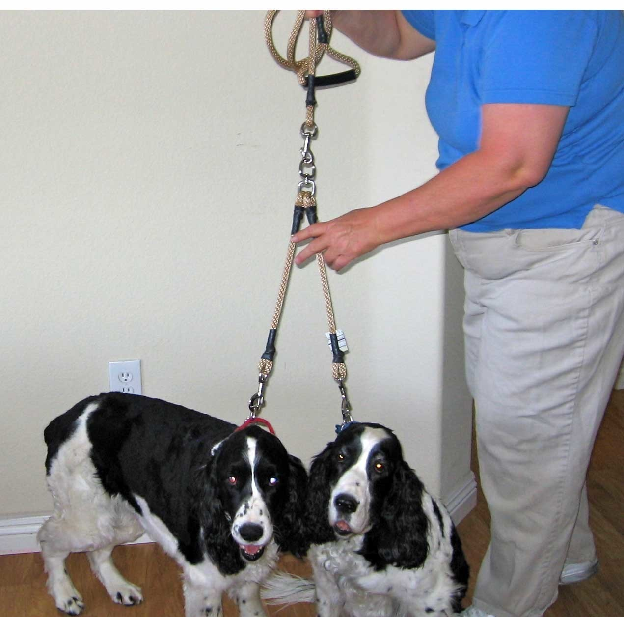 16 inch Splitter For Two Dogs