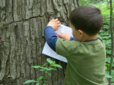 Eco-Explorers - Look, Sniff, Touch, & Listen - Ages 3-Entering K  (June 9-11)