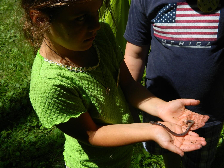 Eco-Explorers - The World Beneath Your Feet - 1st-3rd grade (June 23-26)
