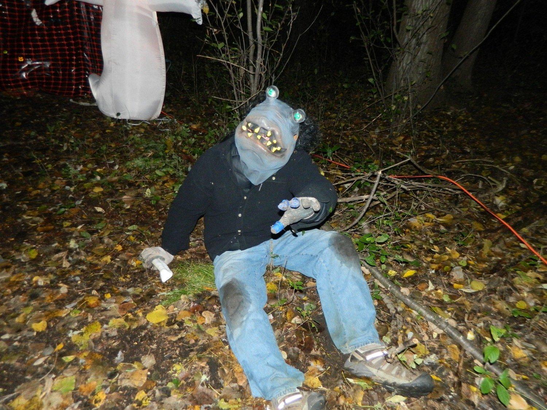 Creepy Crawlies 2019 - Friday Night