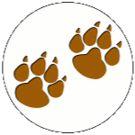 Lion's Clinic: Mountain Lion Adventure Session #1 (12-1 pm)
