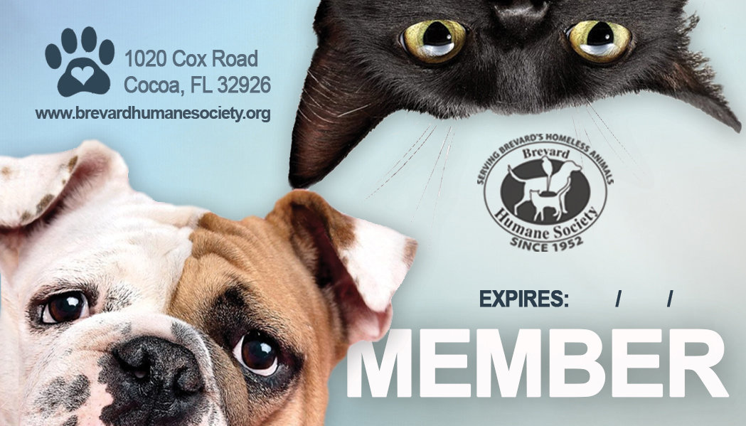 Brevard Humane Society Membership 00034