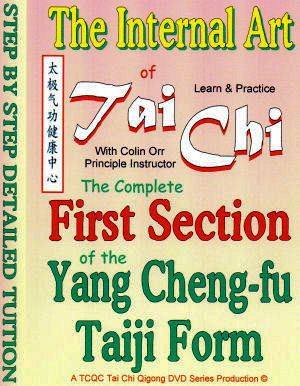 9fc5aa109 First Section of the Yang Cheng-fu DVD Detail: