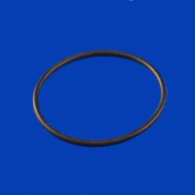 65-1475, Pump, AquaFlo, Union O-Ring, 2