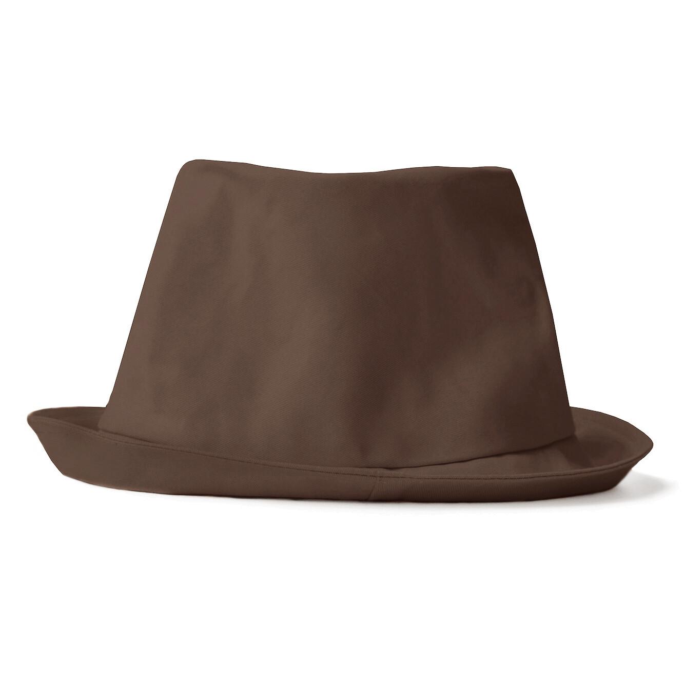 Панама коричневая