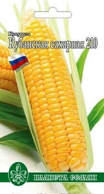 Кукуруза Кубанская сахарная 210