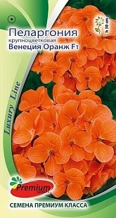Пеларгония крупноцветковая Венеция Оранж F1