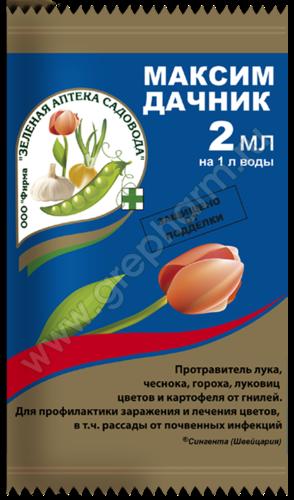 Максим Дачник (2мл) 00962
