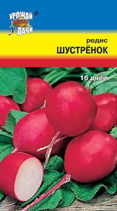 Редис Шустренок 01152