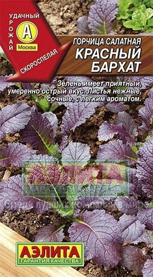 Горчица салатная Красный бархат 01348
