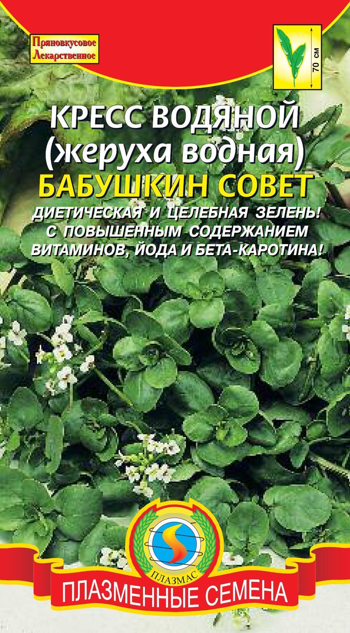 Кресс водяной (жеруха водяная) Бабушкин совет 01388