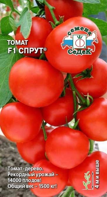 Томат Спрут F1 01626