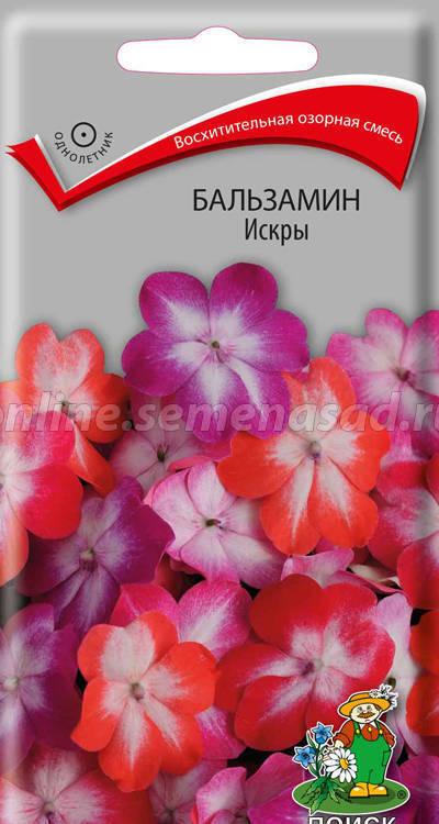 Бальзамин Искры 01662