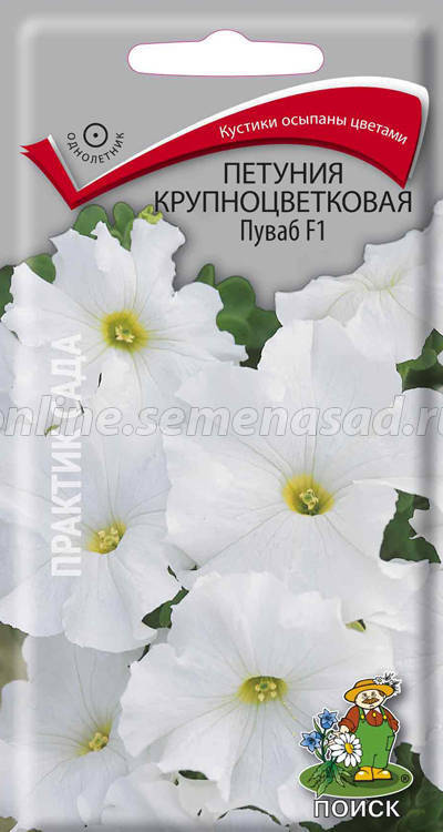 Петуния крупноцветковая Пуваб 01713