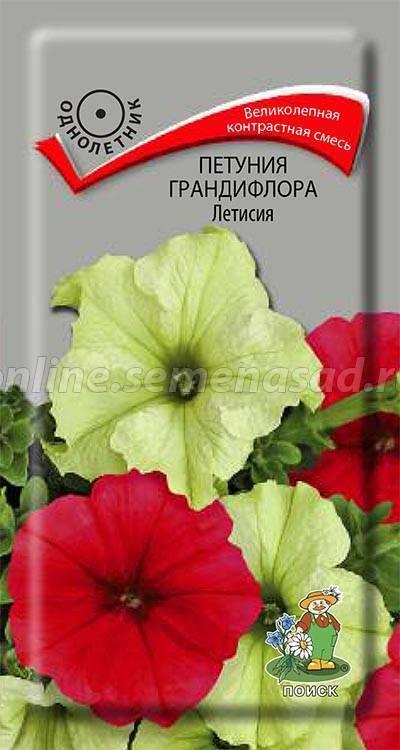 Петуния грандифлора Летисия 01714