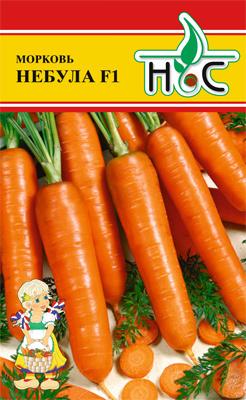 Морковь Небула F1 00780