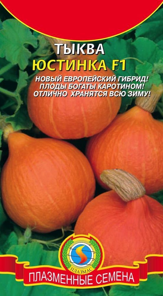 Тыква Юстинка F1 01776
