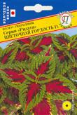 """Колеус гибридный Серия """"Радуга"""" Цветочная гордость"""" F1 01853"""