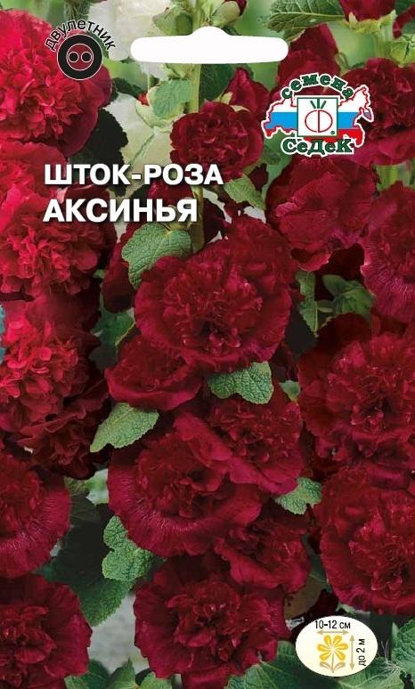 Шток-роза Аксинья 02002