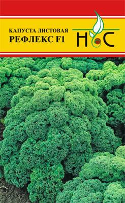 Капуста листовая Рефлекс F1 01808