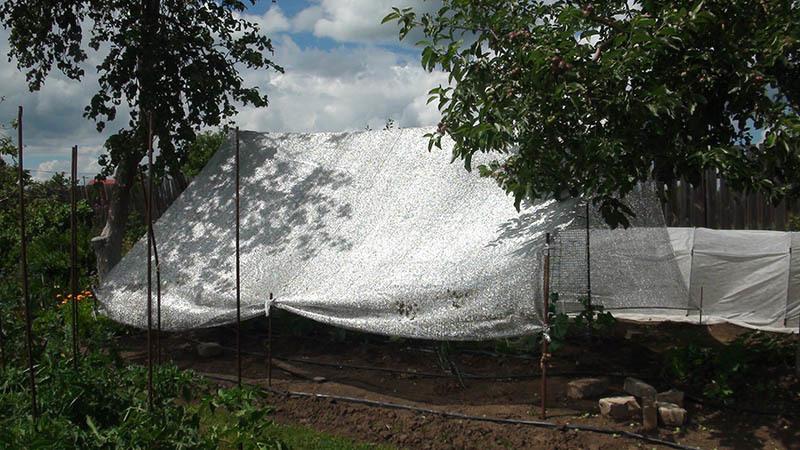 Сетка затеняющая Алюминет (Aluminet) О - 50%