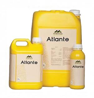 Атланте 00335