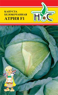 Капуста белокочанная Атрия F1 01814