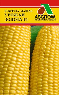 Кукуруза Урожай золота F1 02129