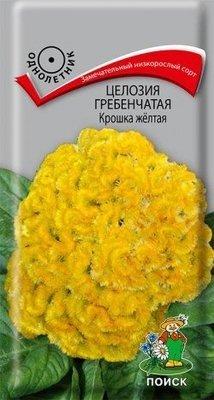 Целозия гребенчатая Крошка желтая