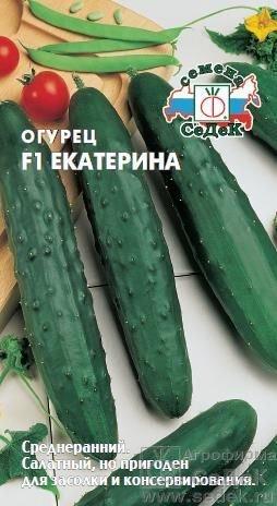 Огурец Екатерина F1