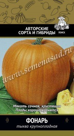 Тыква Фонарь 02529