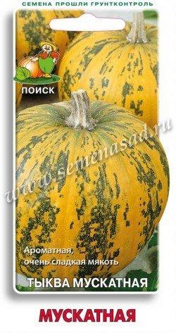 Тыква Мускатная 02532
